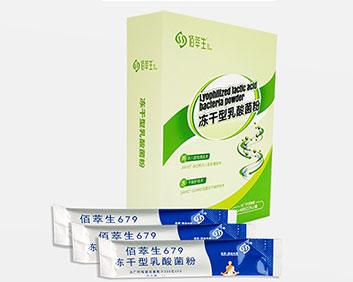 冻干型乳酸菌粉 (成人)