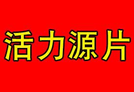 活力源片(国药准字)