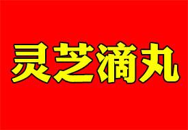 灵芝滴丸(黑盒)国药OTC